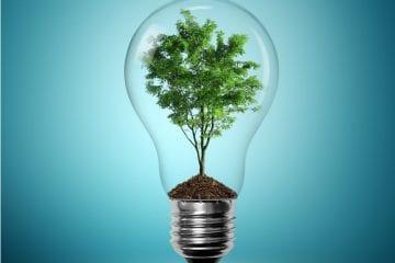 Ahorro energético con aislamiento térmico